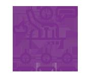 MYM-175x150-purple